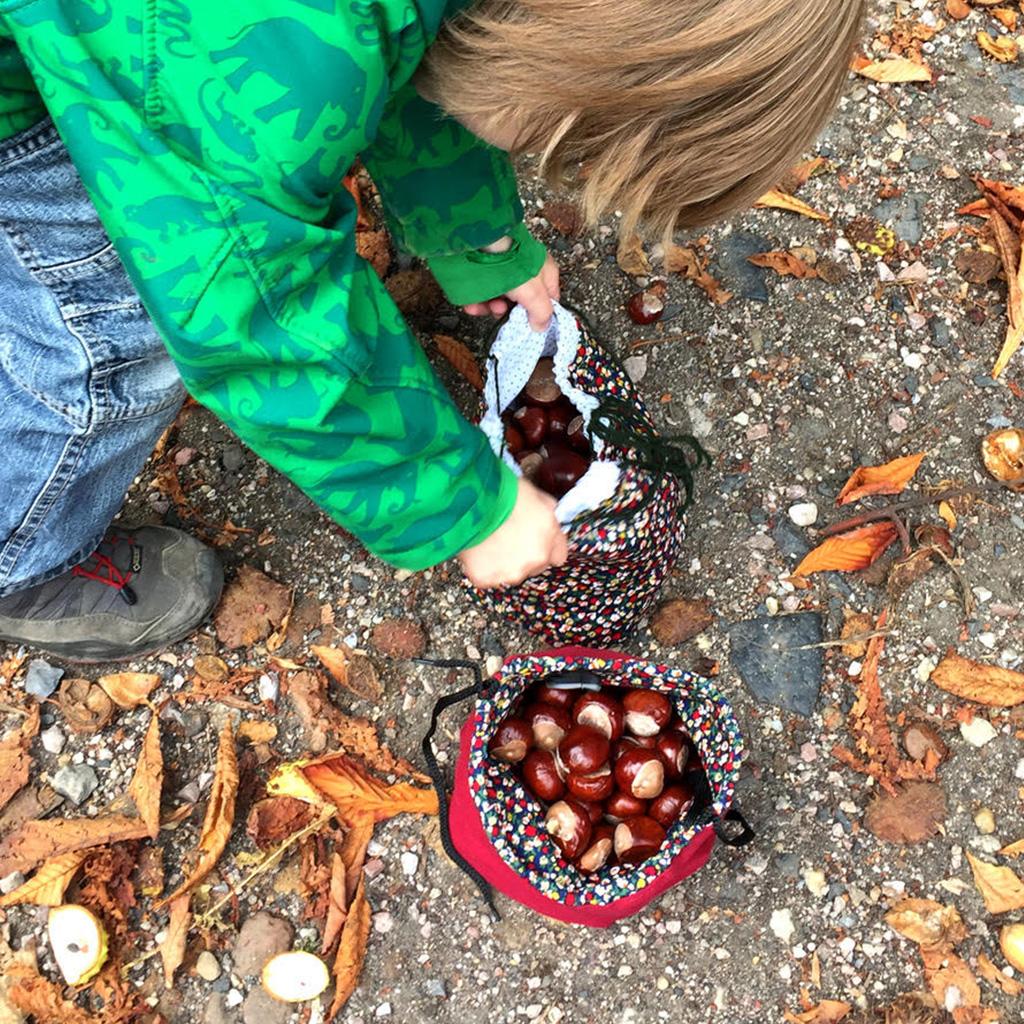 Kastanien sammeln im Herbst
