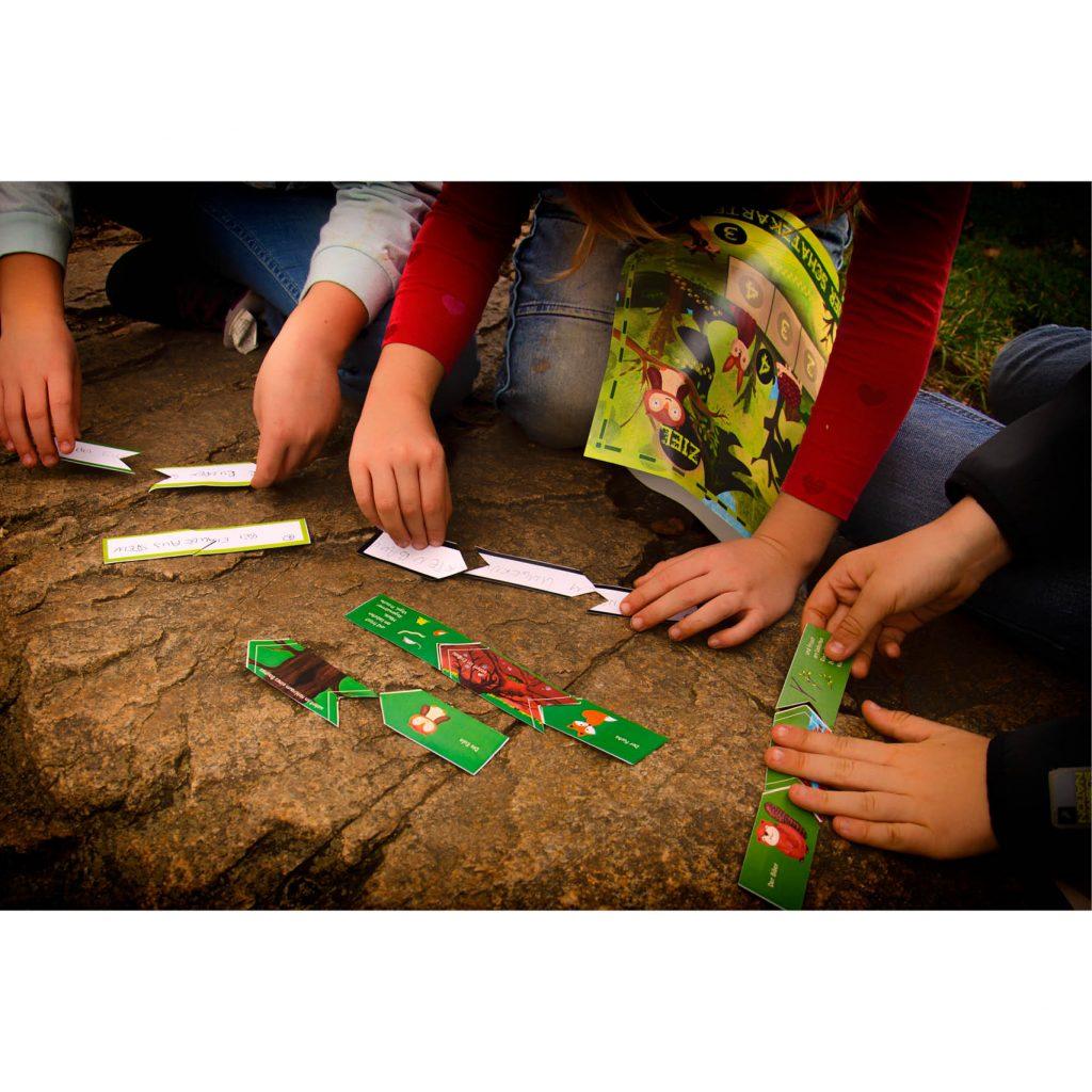 Das 1. Rätsel der Wald-Schatzsuche