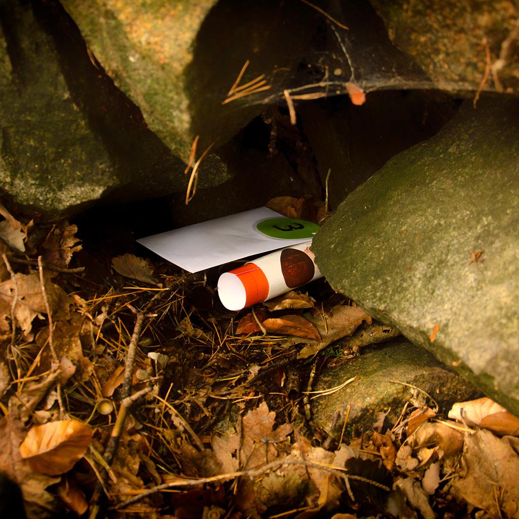 Die Hinweise der Wald-Schatzsuche