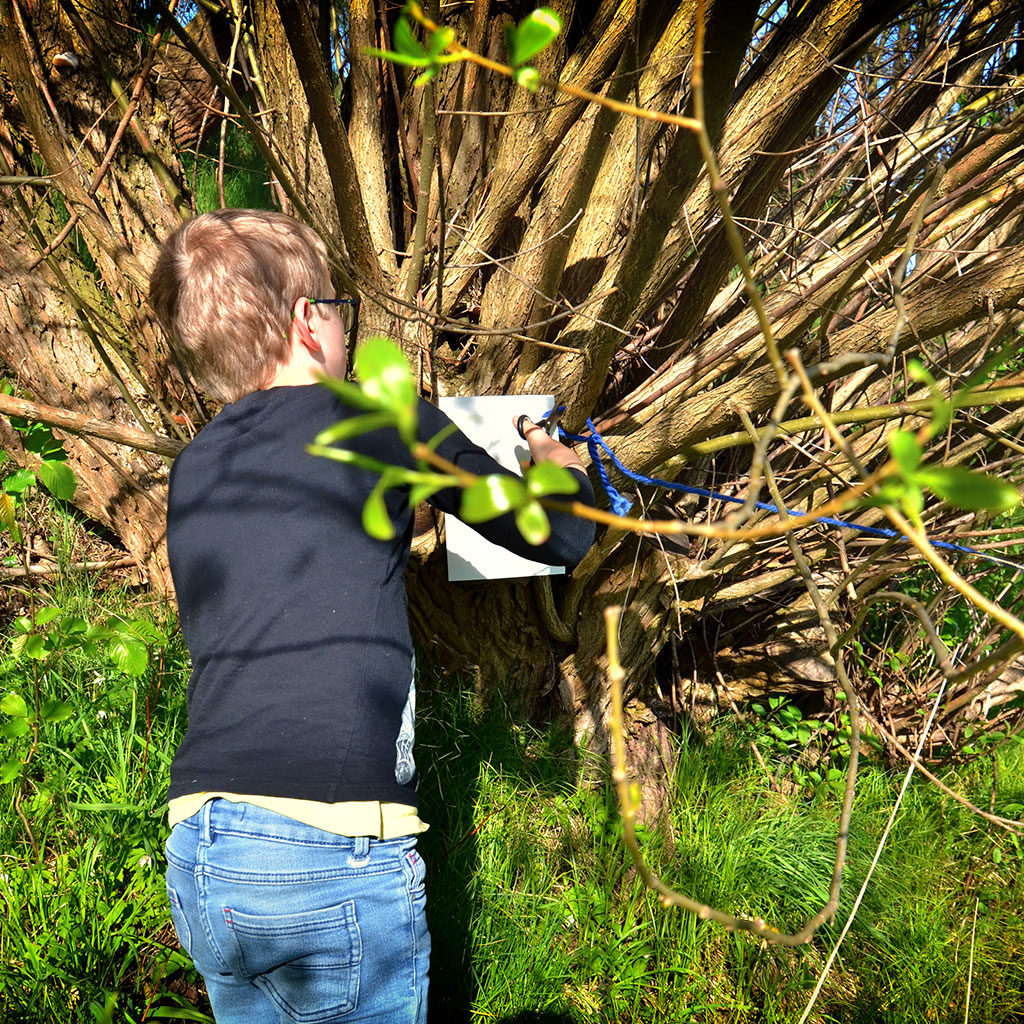 Einhorn-Schatzsuche mit 8-jährigen Kindern