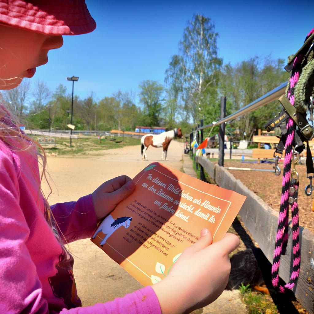 Pferde-Schatzsuche: Die Briefe